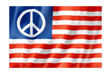 United States Peace Flag Print by  daboost