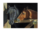 Two Horses At The Stall Gate Art by  joylos