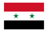 Syrian Arab Republic National Flag Prints by Bruce stanfield