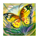 The Yellow-Red Butterfly In Flight Print by  balaikin2009