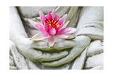 Buddha Hands Holding Flower Poster af anitasstudio