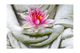 Buddha Hands Holding Flower Poster by  anitasstudio