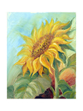 Sunflower, Oil Painting On Canvas Prints by  Valenty