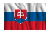 Slovakia National Flag Prints by  duallogic