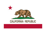California State Flag Prints by Bruce stanfield
