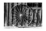 Schub.Photo - Wagon Wheel Background - Poster