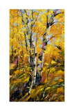 Birches In Autumn Wood Print by  balaikin2009