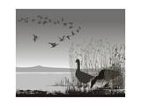 Wild Geese, Delayed Migrating Prints by  Gepard