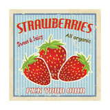 Strawberry Vintage Poster Art by  radubalint