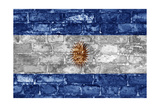 Argentina Flag On Wall Prints by simon johnsen