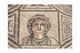 Ancient Roman Mosaic In Volubilis Prints by  p.lange