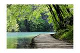 Wooden Path Near A Forest Lake Reproduction giclée Premium par  Lamarinx