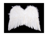 Whiite Angel Wings On Black Posters by  Eillen