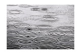 Raindrops On The Water Surface Posters by  Dutourdumonde