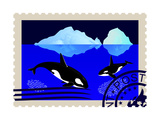 Postage Stamp With Killer Whales Prints by  GUARDING-OWO