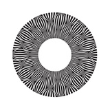 Cool B And W Circular Pattern Prints by  satel