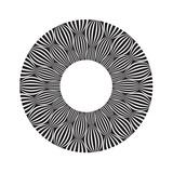 Cool B And W Circular Pattern Prints by  satel