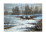 Bog Cloudy, Winter Day Prints by  balaikin2009