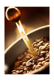 Coffe Beans In The Grinder Prints by  mythja