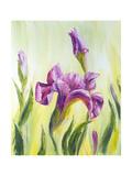 Irises, Oil Painting On Canvas Affiches par  Valenty