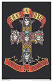 Guns n' Roses Appetite For Destruction Prints