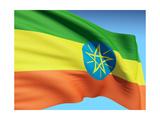 Flag Of Ethiopia Kunst af bioraven