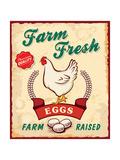 Retro Fresh Eggs Poster Design Plakater af  Catherinecml