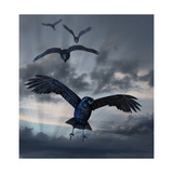 Crows Flying Poster by  AlienCat