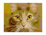 Orange Cat - Digital Oil Painting Poster by  anatomyofrockthe