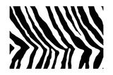 Black And White Animal Print Posters by Willee Cole