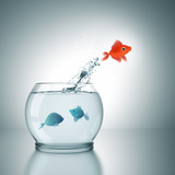 A Fishbowl With A Red Fish Jumping Out Of The Water Photographic Print by  magann