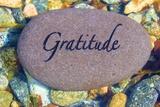 Gratitude Affiches par  photojohn830