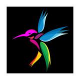 Hummingbird Premium Giclee Print by  yod67