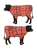 Cuts Of Beef Posters by  ciuciumama