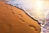 Beach, Wave And Footsteps At Sunset Time Posters by  Hydromet