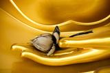 Buddha Hand Giclée-Premiumdruck von worradirek muksab