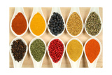 Colorful Spices Print by  Fotokris