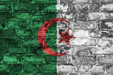Algeria Flag On Wall Prints by simon johnsen