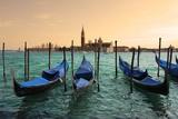 San Giorgio Maggiore Church In Venice, Italy Poster by  rglinsky