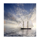 Sailboat Sun And Sky Print by  rolffimages