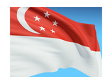 Flag Of Singapore Posters by  bioraven