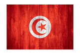 Flag Of Tunisia Prints by Miro Novak