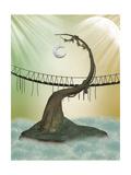 Bridge Prints by  justdd