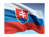 Flag Of Slovakia Poster by  bioraven