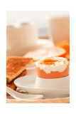 Soft Boiled Egg Poster by  mythja