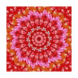 Red Mandala Prints by  AGCuesta