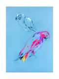 Sketch Of A Parrot Prints by Boyan Dimitrov