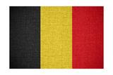 Flag Of Belgium Poster by Miro Novak