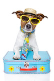 Tourist Dog With A Hat , Sunglasses And A Bag Posters by Javier Brosch