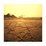 Dry Landscape Plakater af Andrushko Galyna